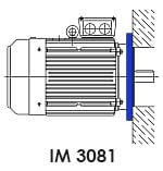 монтажное исполнение асинхронного электродвигателя IM 3081 фланец
