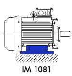 монтажное исполнение асинхронного электродвигателя 7,5 кВт IM 1081 лапы