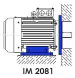 монтажное исполнение асинхронного электродвигателя IM 2081 фланец лапы комбинированный