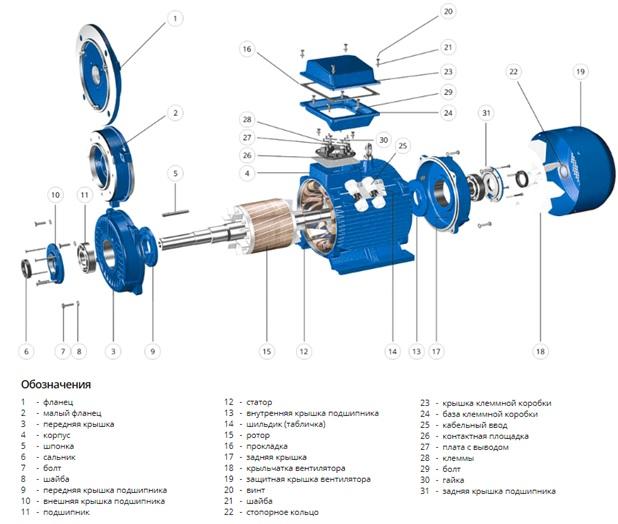 Схема асинхронного электродвигателя